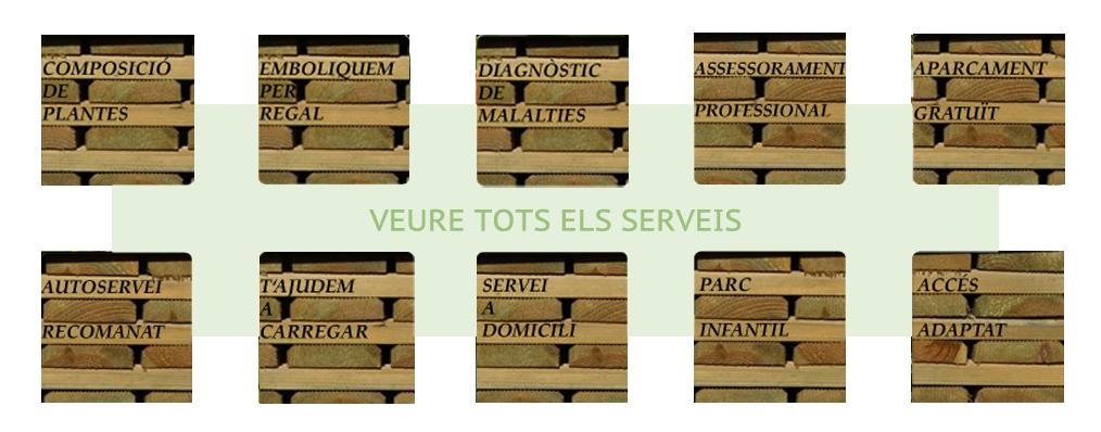 serveis2